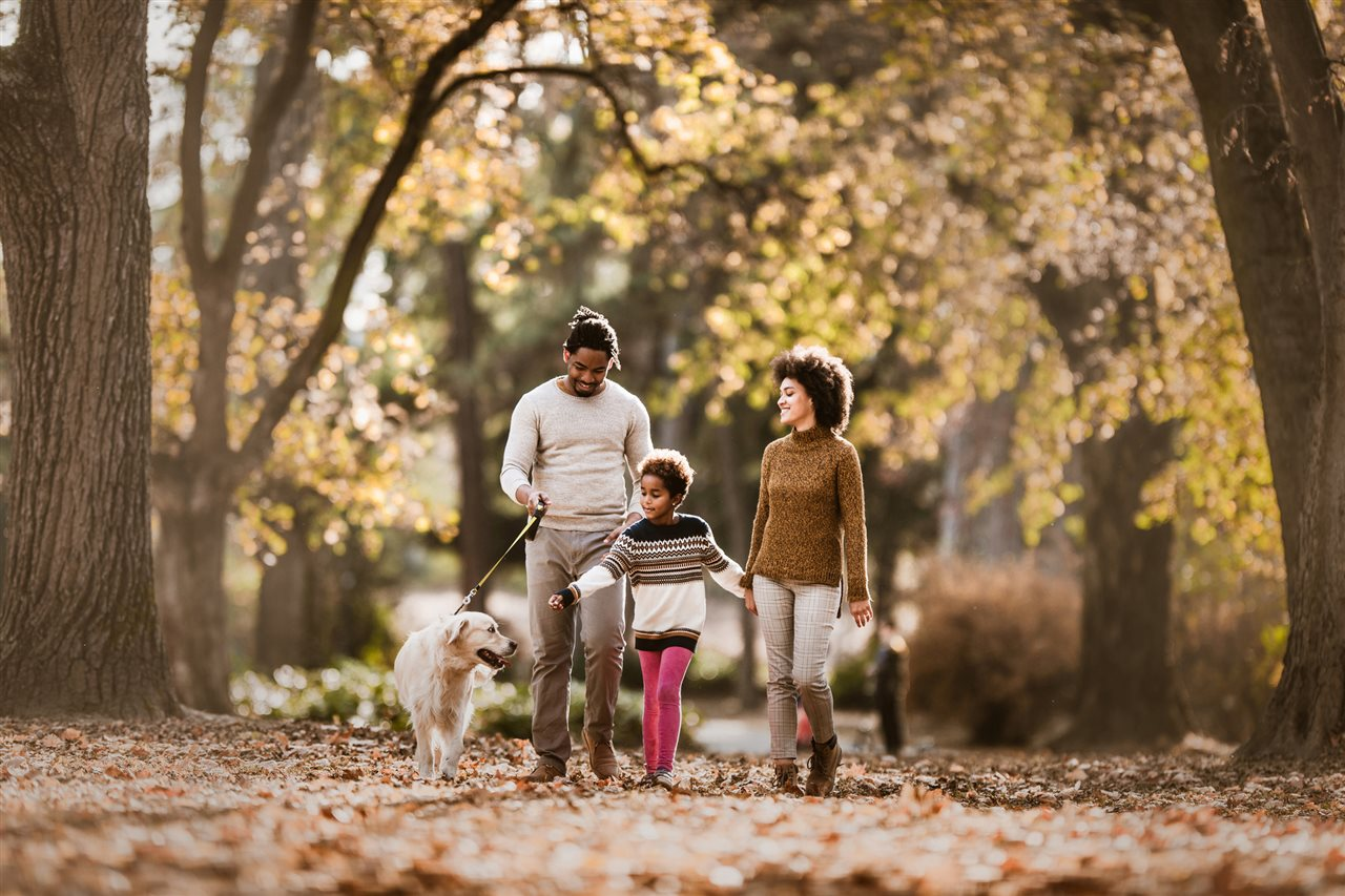 7 Tips for Enjoying Autumn With Your Furry Best Friend