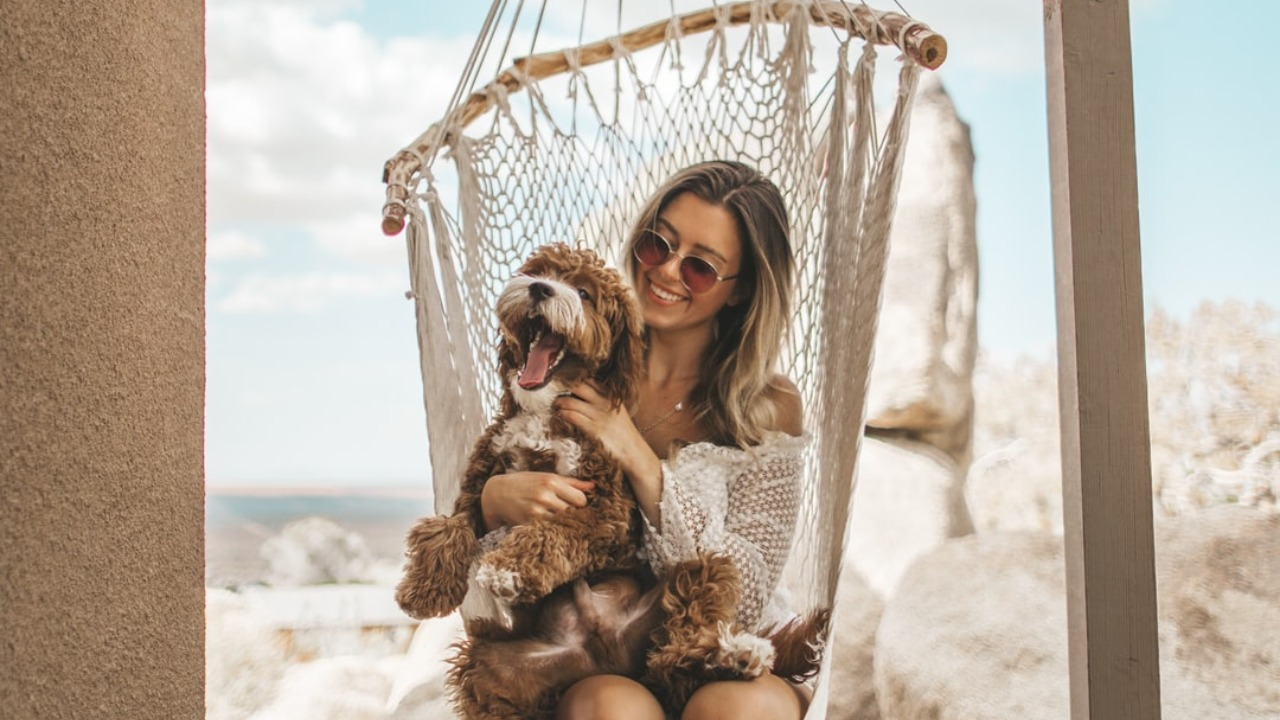 The Benefits of Being a Dog Owner